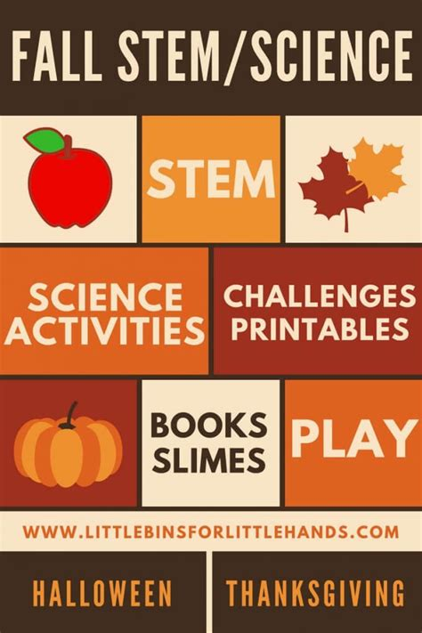 fall stem activities  science experiments  bins