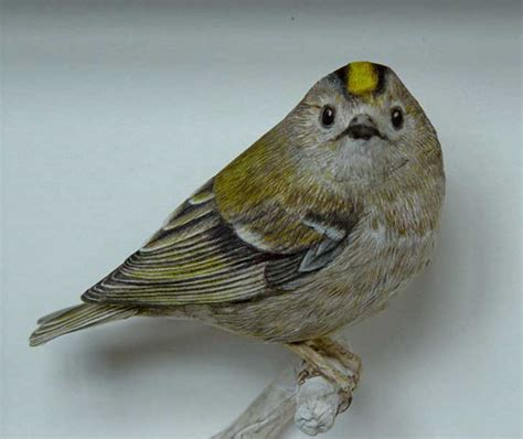 Realistic Papercraft - johan scherft creates amazingly realistic birds from paper