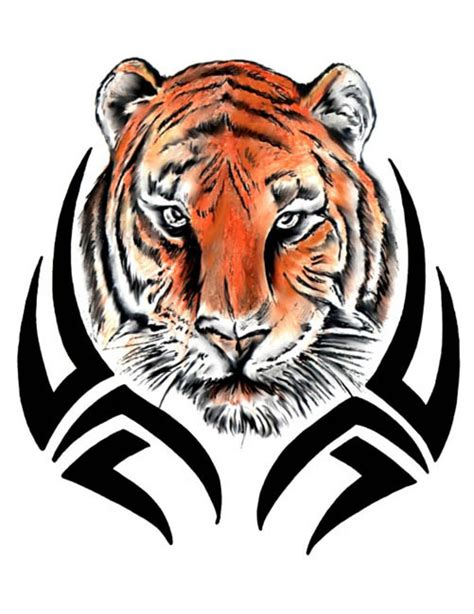 tiger with tribal designs tattoo free design ideas
