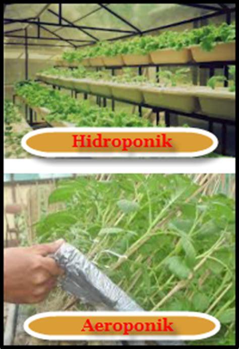 contoh biopestisida bioteknologi pertanian media belajar