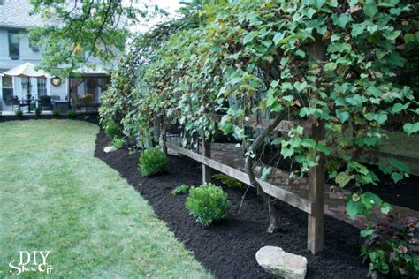 backyard grapes grape arbor gazebo makeover diy show off diy