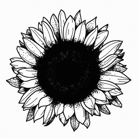 black sun tattoo designs 25 best ideas about black sun on