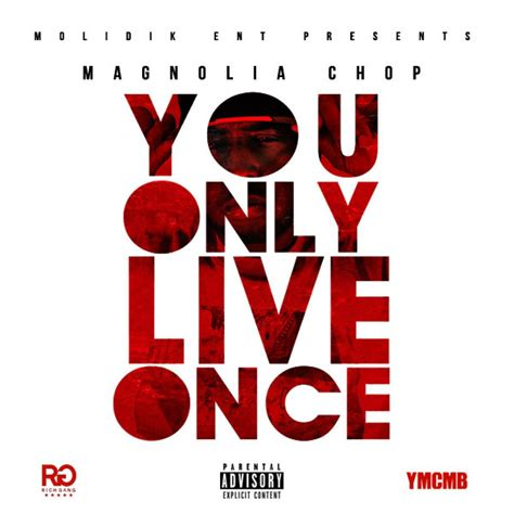 Yolo You Only Live Once the gallery for gt you only live once