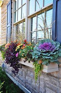 Pflanzen überwintern Balkon 1609 by Fensterbrett Balkonbrett Dekorieren Bl 252 Hende Blumen Im