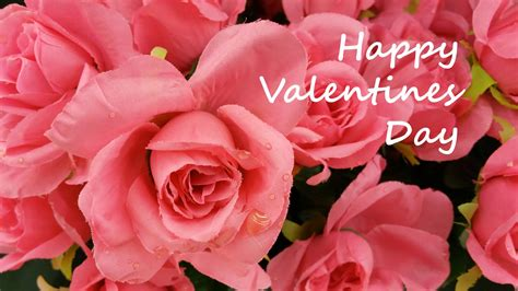 valentines pictures valentines day free stock photo domain pictures