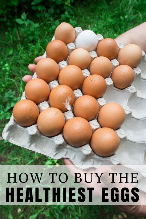 how to buy the healthiest eggs