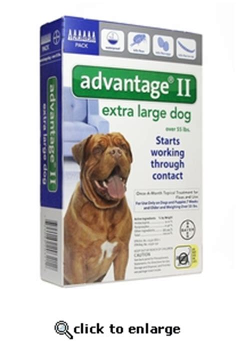 advantage for dogs 55 lbs 12 month advantage ii flea for dogs 55 lbs