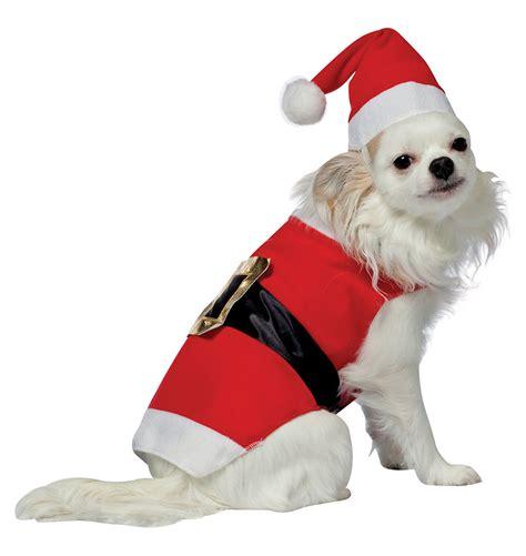 santa puppies santa costume costume craze
