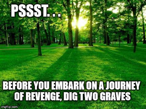 Grass Memes - greener grass imgflip
