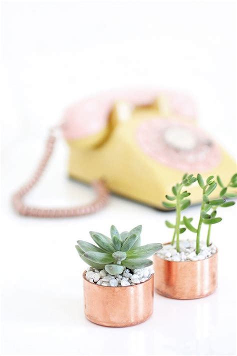 succulent holder my diy copper cap succulent holder i spy diy bloglovin