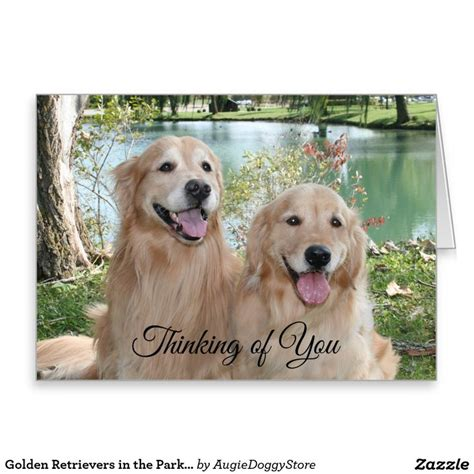 golden retriever jokes 100 best images about golden retriever greeting cards postcards on