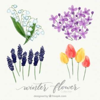 imagenes de flores invernales vegetacion invierno fotos y vectores gratis