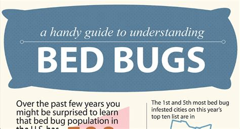 home remedies for bed bugs bites home remedies for bed bug bites hrfnd