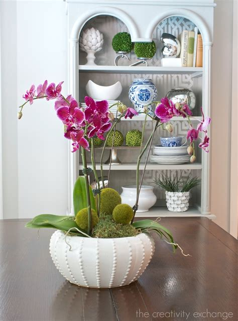 Orchid Planter Ideas by Decorating With Orchids And A Great Trick For Growing Them