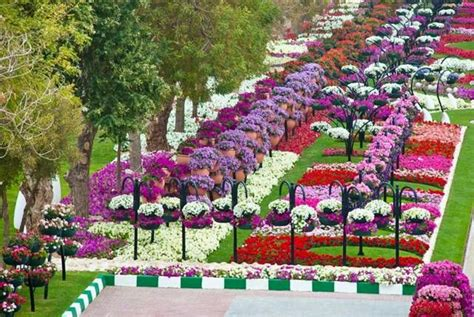 Garden City Flowers Flower Gardens In The World Ritemail Flower Garden Al Ain Paradise Gorgeous