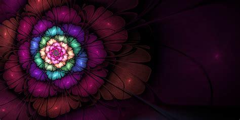 Fractal apophysis digital art 3d abstract flowers wallpaper art and paintings wallpaper