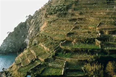 terrazzamenti liguri le frane