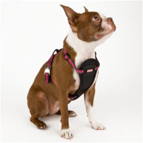 puppy harness petsmart shop petsmart harness on wanelo