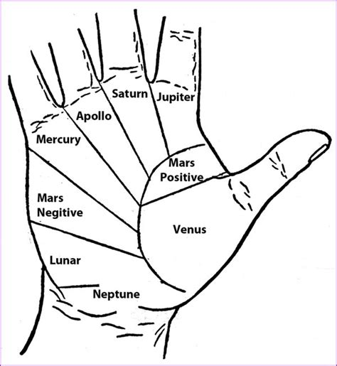 palm reading basic principles and harry potter forums view topic the slug club
