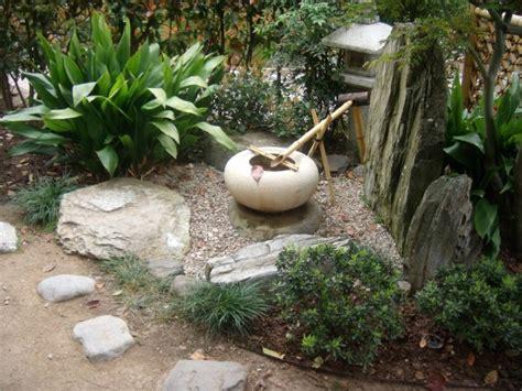 piante da giardino resistenti al freddo le piante da giardino resistenti al freddo