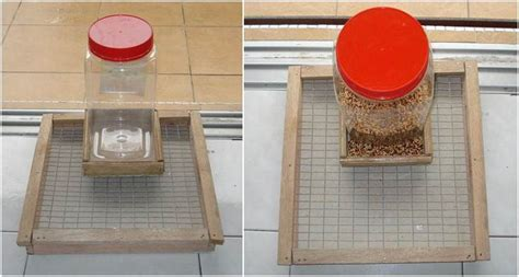 Alat Pemberi Makan Ikan Otomatis Sederhana membuat bird feeder untuk kandang koloni om kicau