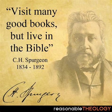 in the bible and in our lives books live in the bible reasonabletheology org