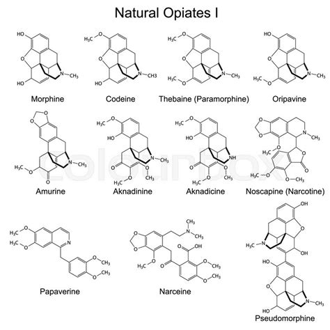 Chemical Detox For Opiates by Structural Formulas Of Opiates Set