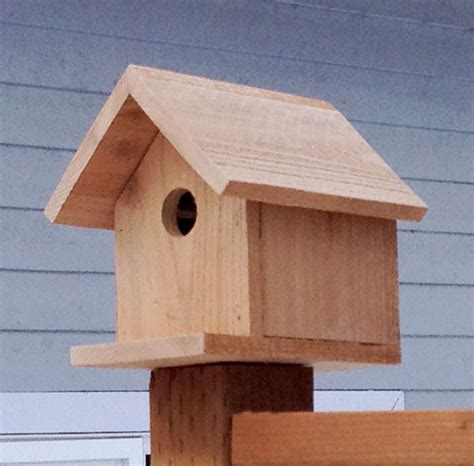 plans for building bird houses build wooden basic bird house design plans download bed