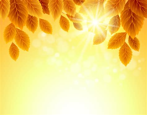 autumn golden yellow background vector
