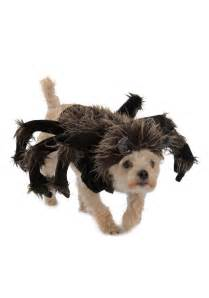 dogs halloween costume tarantula dog costume