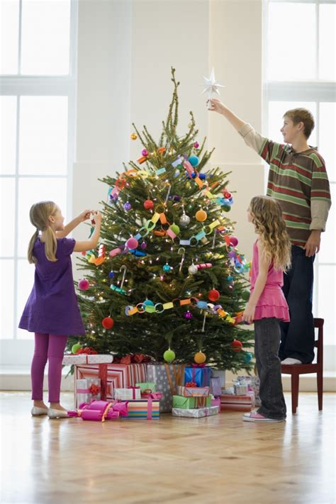 16 fascinating facts about christmas trees lakeside
