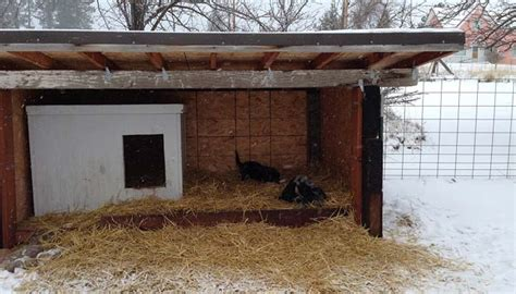 Diy Cold Weather Dog House Keep Your Dog Warm In Winter