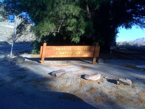 Tamarisk Grove Cabins by Albert S Rv Rental