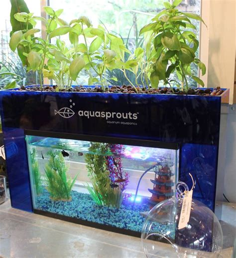 carrying aquasprouts  fun interactive