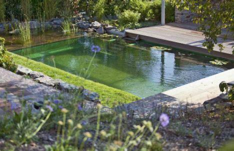 backyard living pools 17 backyard beaches natural swimming pools more webecoist