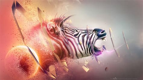 wallpaper abstract animal animal full hd wallpaper and background image 1920x1080