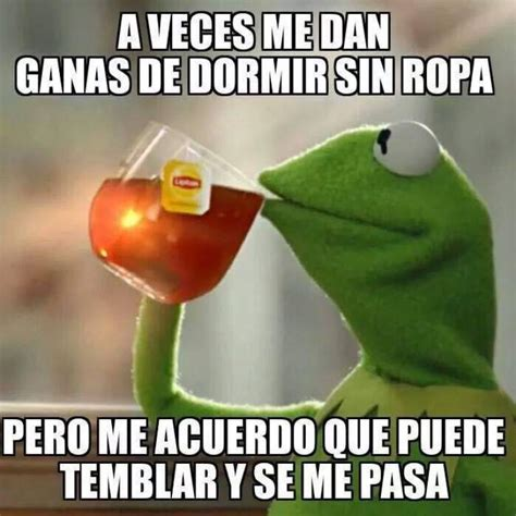 imagenes de la rana sarcasticas los memes tras el sismo de 7 3 grados en el salvador