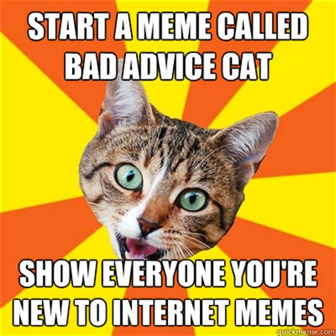 Cat Internet Meme - bad advice cat memes quickmeme