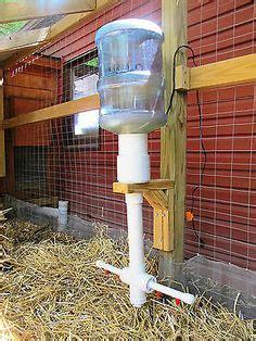 sistola da giardino l acqua nel pollaio come gestire l abbeveratoio per le