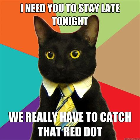 Meme Business Cat - our picks for the 10 best cat memes of all time