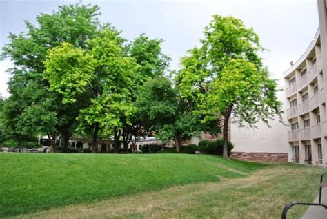 harvest house boulder photo4 jpg picture of millennium harvest house boulder tripadvisor