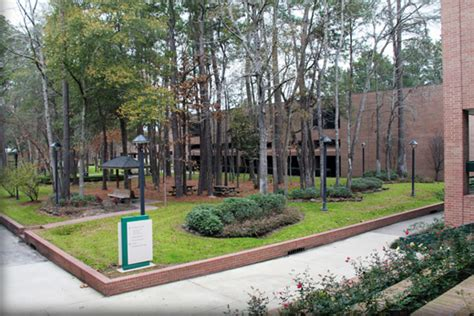 welcome to uhd lsc kingwood cus university of