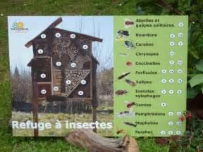 plan et r 233 alisation de 224 insectes forum gazon