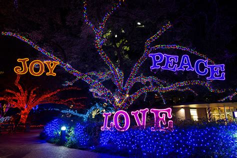 Houston Zoo Zoo Lights Zoo Lights 2015 Houston