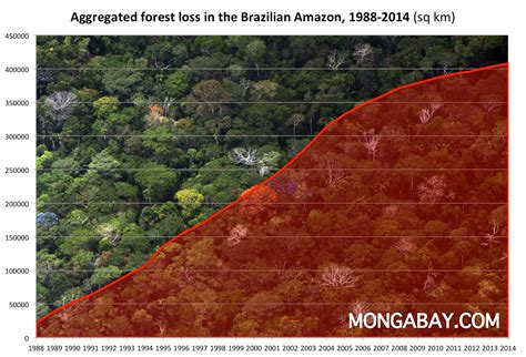 amazon co jp rainforests of brazil an environmental status report