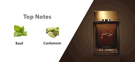 Parfum Original Dg The One For 100ml Souq The One Royal By Dolce Gabbana For