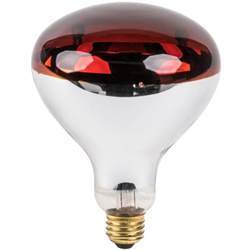 lavex janitorial 250 watt red infrared light bulb heat lamp