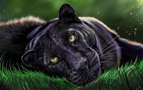 Black Leopard digital speed painting black leopard artrage
