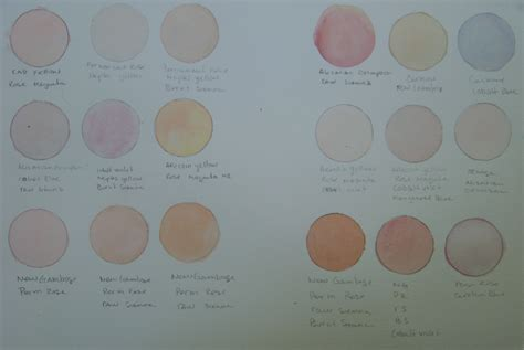 color tone skin tone chart for watercolor a painting a week
