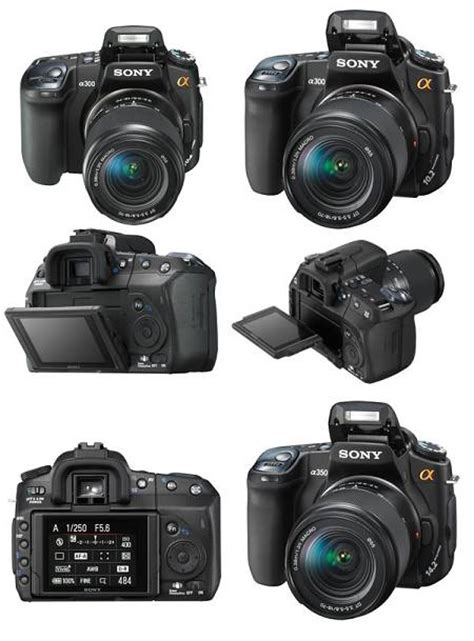 Kamera Sony Untuk Pemula scientists only 10 kamera slr terbaik untuk pemula